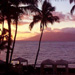 Maui Screen Savers
